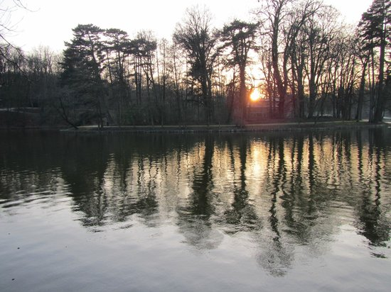 Bois de la Cambre and Foret de Soignes : View of the sun setting across the island wtih Chalet Robinson