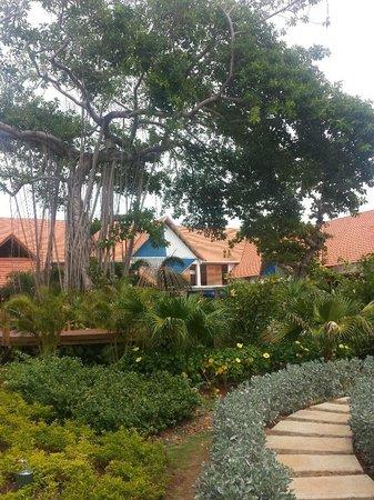 Decameron Isleno: Hermoso Jardin