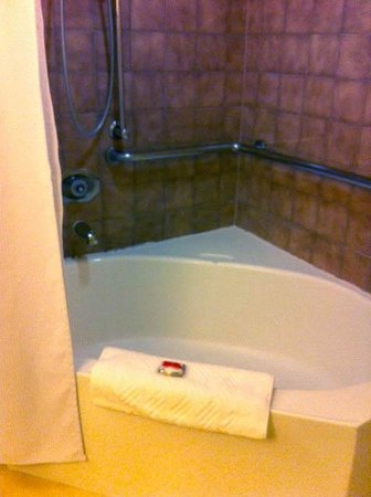 Tropicana Las Vegas - A DoubleTree by Hilton Hotel: Baño con tina