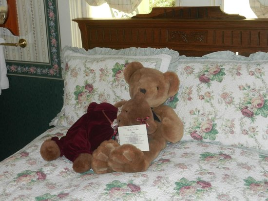The Groveland Hotel: Greetings From Teddy and Friend