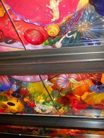 Jardín y cristal Chihuly: ceiling