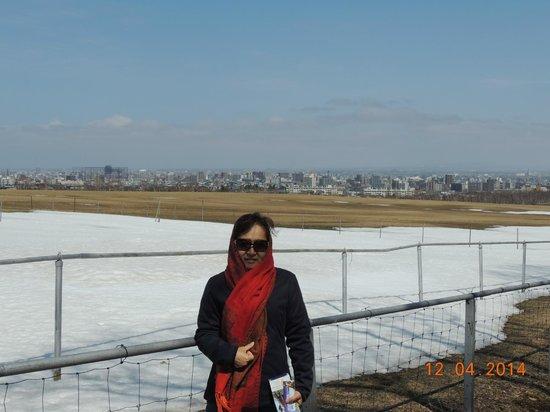 Sapporo Hitsujigaoka Observation Platform : Vista da cidade ao longe
