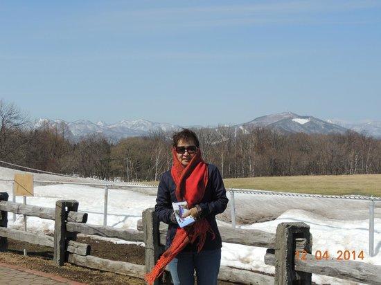 Sapporo Hitsujigaoka Observation Platform : Vista das montanhas
