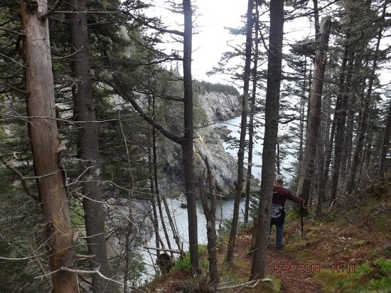 The Bold Coast: Pay attention when walking, long way down