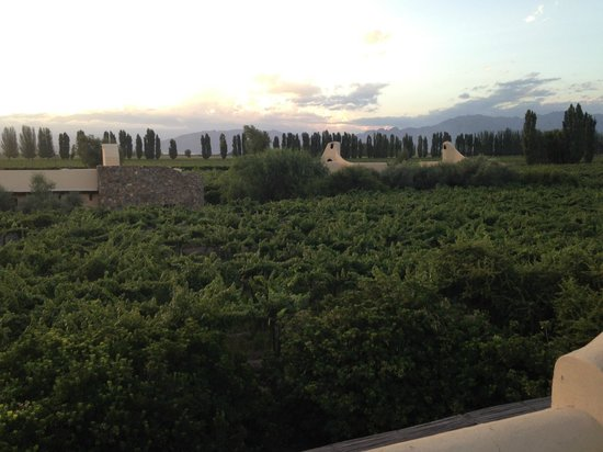 Cavas Wine Lodge: View from the private terrace in our room