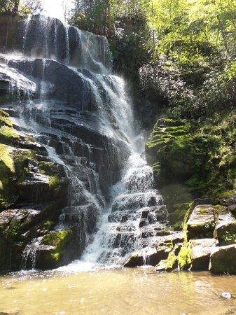 Miller's Land of Waterfall Tours : One of the prettiest waterfalls I've ever seen!