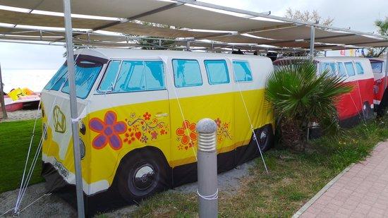 HLB Hang Loose Beach: Camp Ground