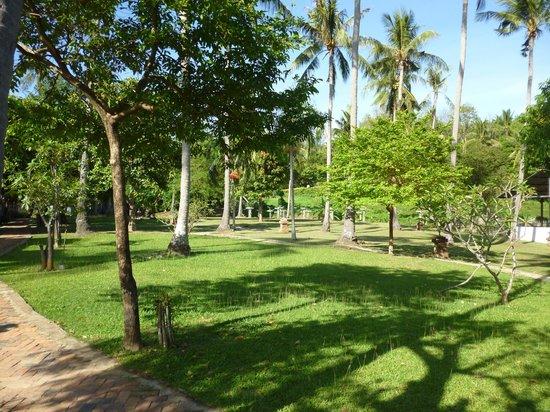 Soontreeya Lanta: grounds