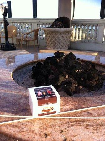 Manchester Grand Hyatt San Diego : the firepit & the s'mores kit