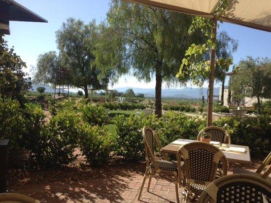 Ponte Vineyard Inn : Breakfast View