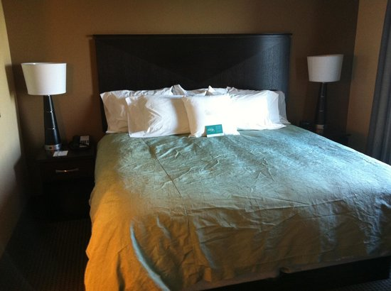 Homewood Suites by Hilton Phoenix Chandler Fashion Center: Bed