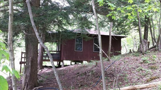 Camp Driftwood: Hemlock cabin side view