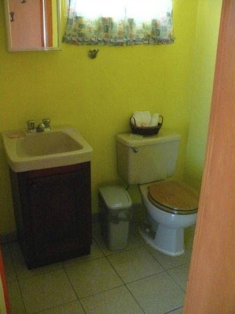 Howler Monkey Lodge : Bathroom