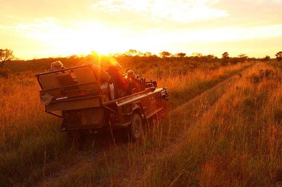 Savanna Private Game Reserve : Sunrise at Savanna