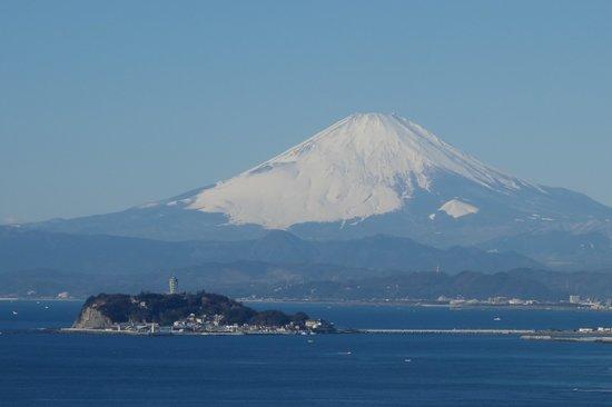 Hiroyama Park: 富士山と江の島