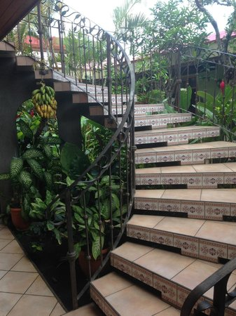 Hotel Cafe Jinotega: The staircase in the central garden