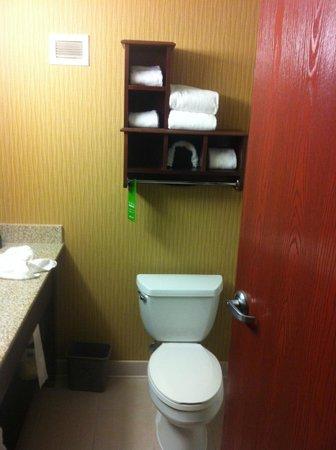 Hampton Inn - St. Louis Downtown at the Gateway Arch: bathroom