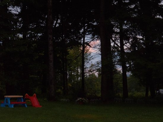 Shaheen's Adirondack Inn: Evening hours view in the back woods