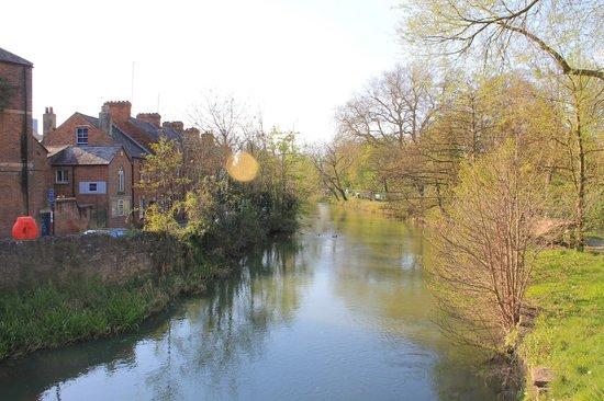 University of Oxford: Río