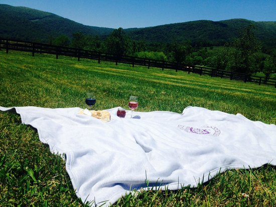King Family Vineyards : Field picnic with wine and cheese
