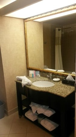 Hampton Inn Dallas - Irving - Las Colinas: Clean bathroom