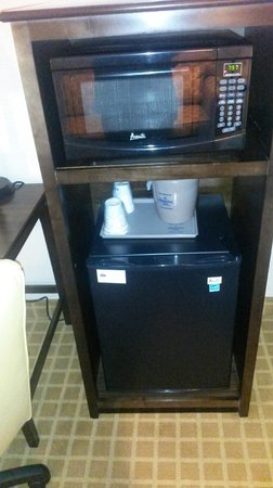 Hampton Inn Dallas - Irving - Las Colinas: Mini-fridge & microwave