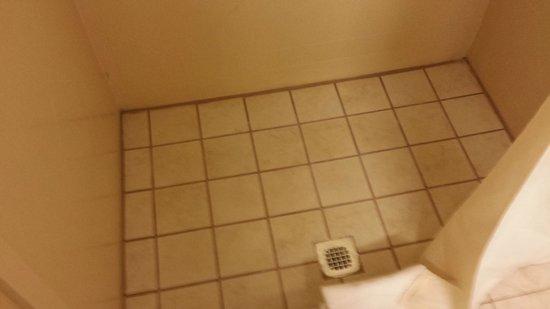 Hampton Inn Staunton: Shower tile floor - very clean!