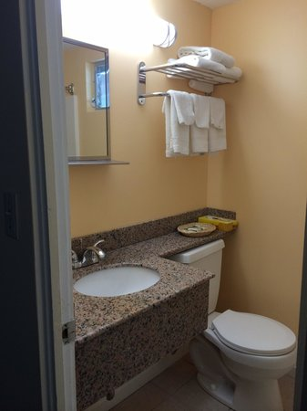 Blue Dolphin Inn : New granite sinks!!