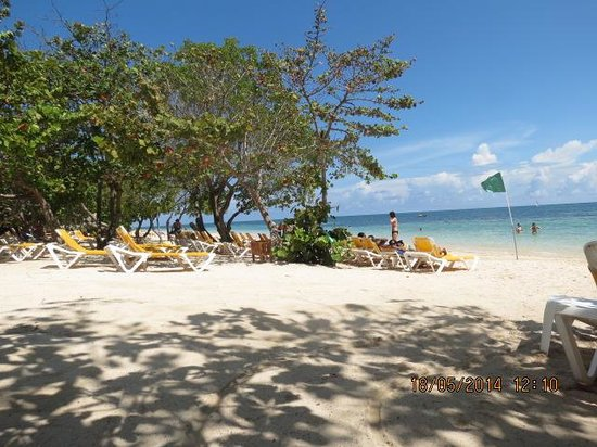 Iberostar Rose Hall Beach Hotel : Playa