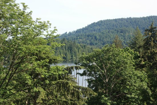 Bowen Island Hideaway: The view of Killarny Lake from the B&B