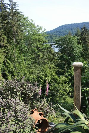 Bowen Island Hideaway: View to the lake
