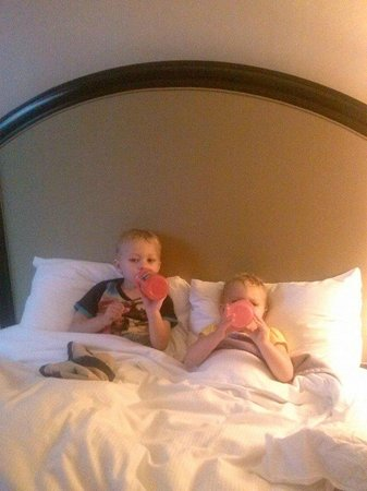 Hilton Atlanta : The kids loved the beds