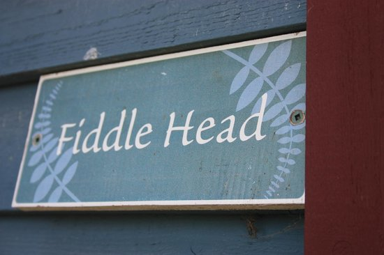 Bowen Island Hideaway: Fiddle Head room