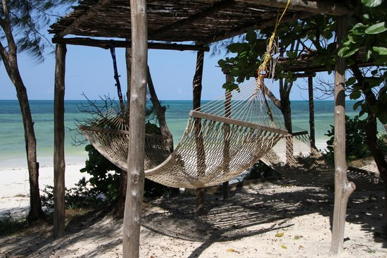 Mbuyuni Beach Village: Hammock with a view of the beach