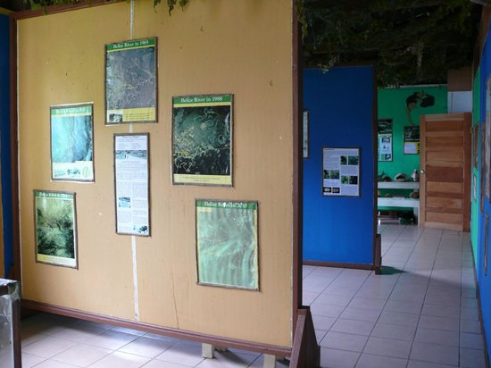 Community Baboon Sanctuary : Museum