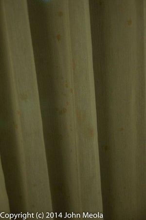 Holiday Inn Williamsport: The curtains
