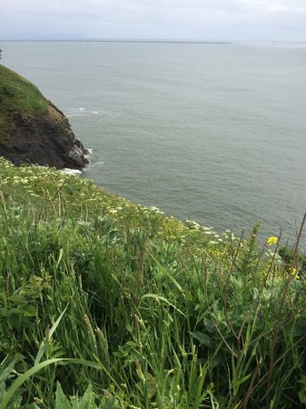Cape Disappointment Lighthouse: On the trail