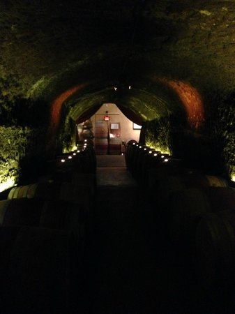 Del Dotto Vineyards & Winery: View from inside the caves.