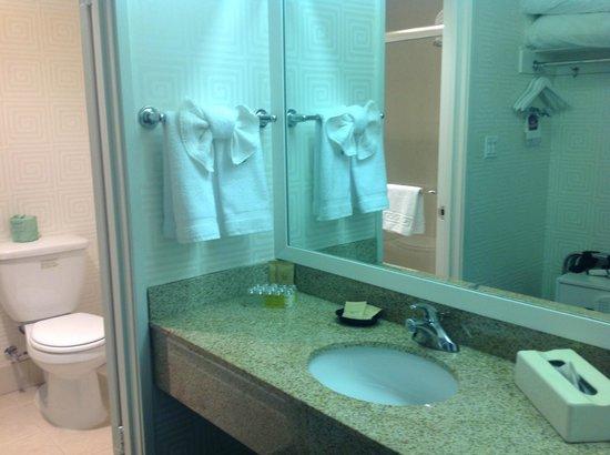 BEST WESTERN PLUS Americania : baño de la habitación
