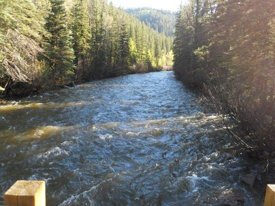 Circle K Guest Ranch: Delores River