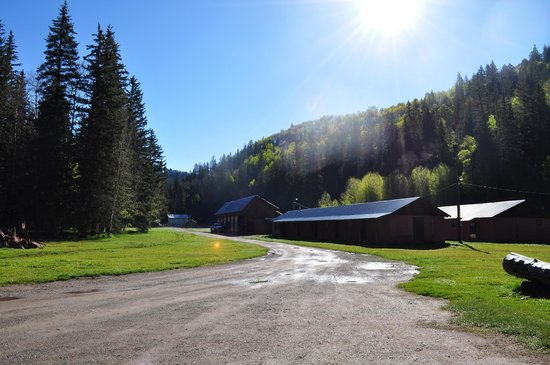 Circle K Guest Ranch: toward the stables