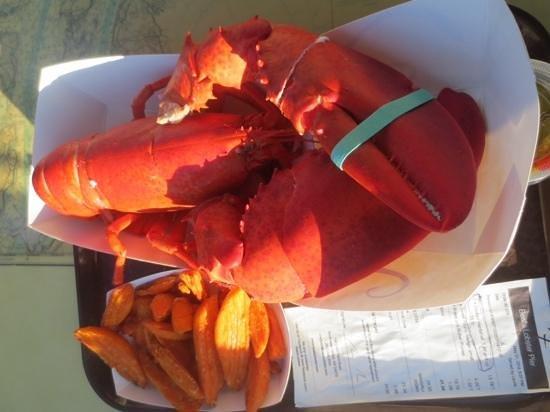 Beal's Lobster Pier : lobster