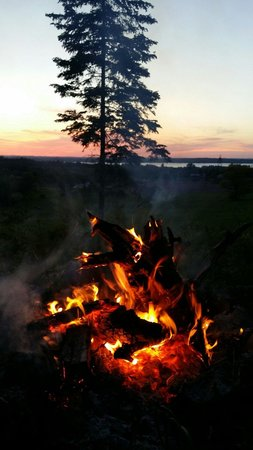 Hillview Haven Estate: Bonfire at night.