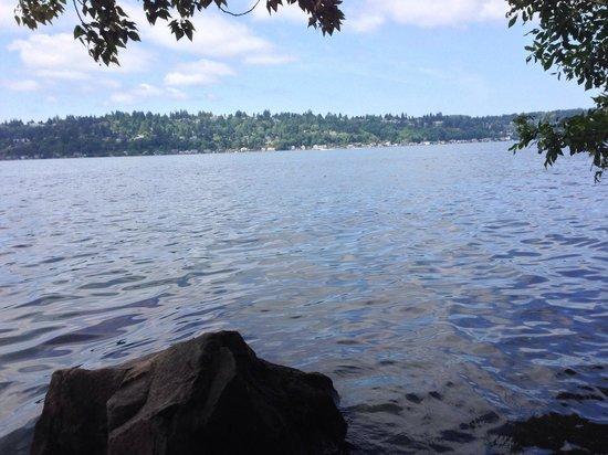 Saint Edward State Park: Lake Washington