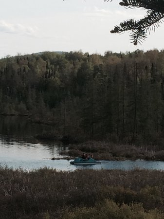 Mountain Lake Campground and RV Park: View of us canoeing from our site #74