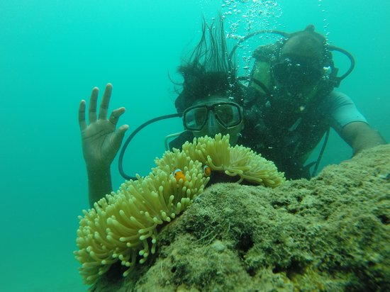Andaman Bubbles: A different world altogether!