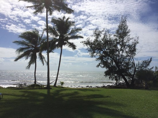 Turtle Cove Beach Resort: The View from the beach front rooms