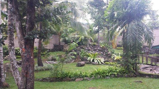 Seven Eleven Hotel & Residence: garden