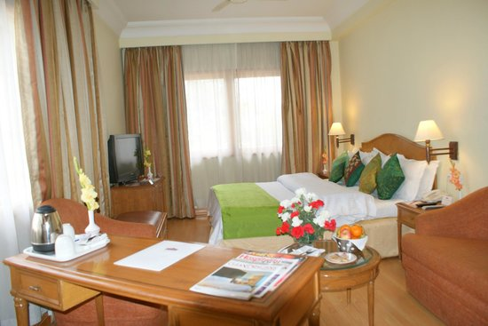 Hotel Ritz Plaza: Superior Deluxe Room