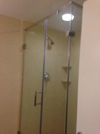 Hilton St. Louis Frontenac: Terrific 2 person shower